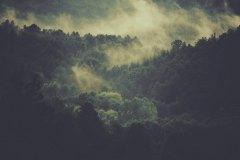 Landscape-02